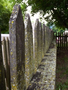 love this old, weathered fence