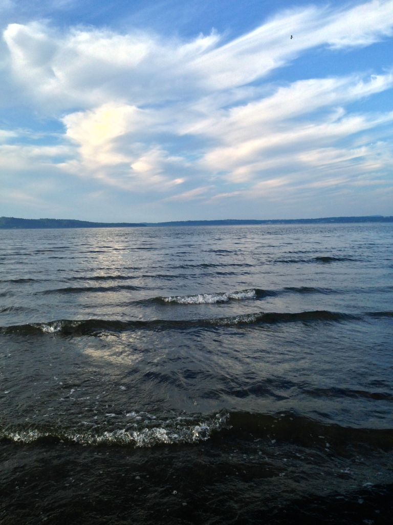 The calming waters of Elliott Bay from Dash Point State Park.