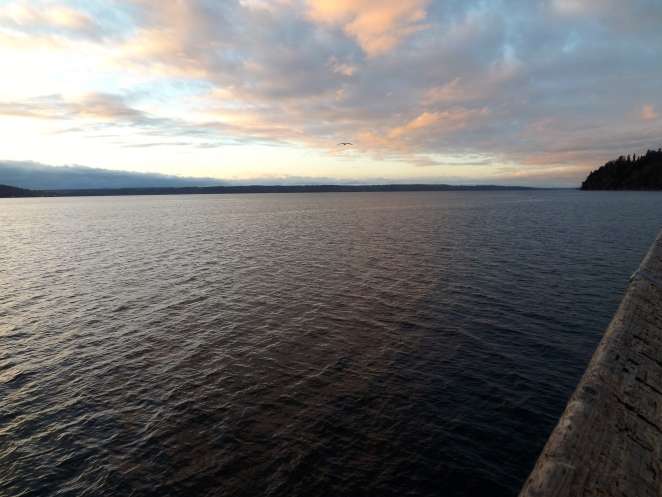 The painted sky reflecting off the water, looking northward toward Seattle.