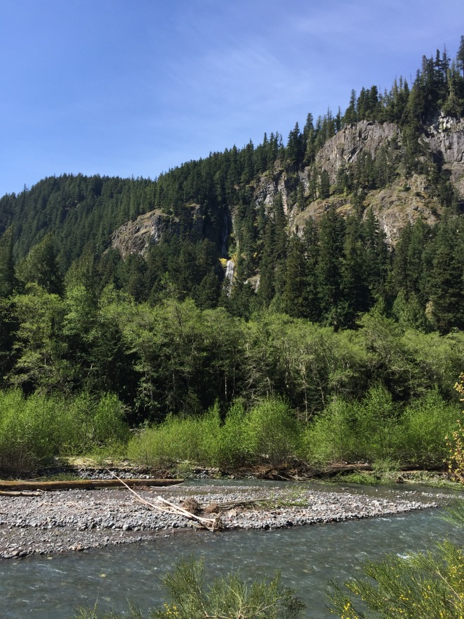 Our first stop, Skookum Falls, and the White River (sourced from Emmons Glacier on Rainier) beneath it.