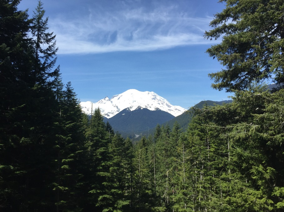 Our next stop was the Mount Rainier viewpoint at about 3210 feet. A popular spot along the route, the view of the volcano and its glaciers is breathtaking.