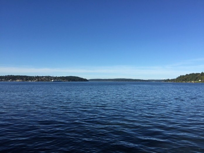 Puget Sound from the Annapolis Foot Ferry dock.