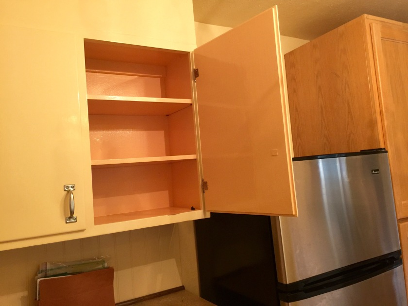 Pink inside the cabinets!