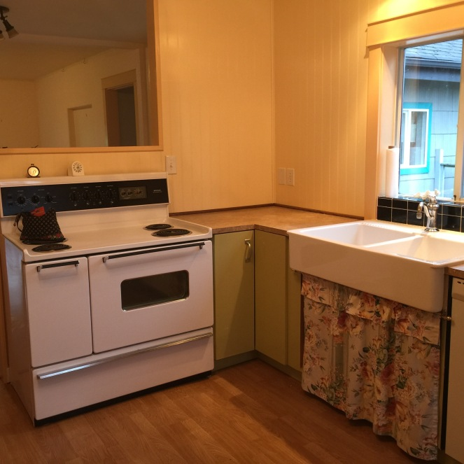 """The double-oven, 40"""" electric stove and farmhouse sink - both of which make my heat flutter."""